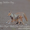 Happy Mothers Day…. www.ashokspandan.com